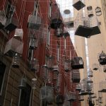 The Birdcages in Angel Place – Sydney, Australia