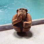 The Do Not Disturb Monkey – Le Meridien Koh Samui, Thailand