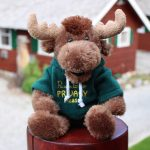The Do Not Disturb Moose – Paradise Lodge and Bungalows, Lake Louise